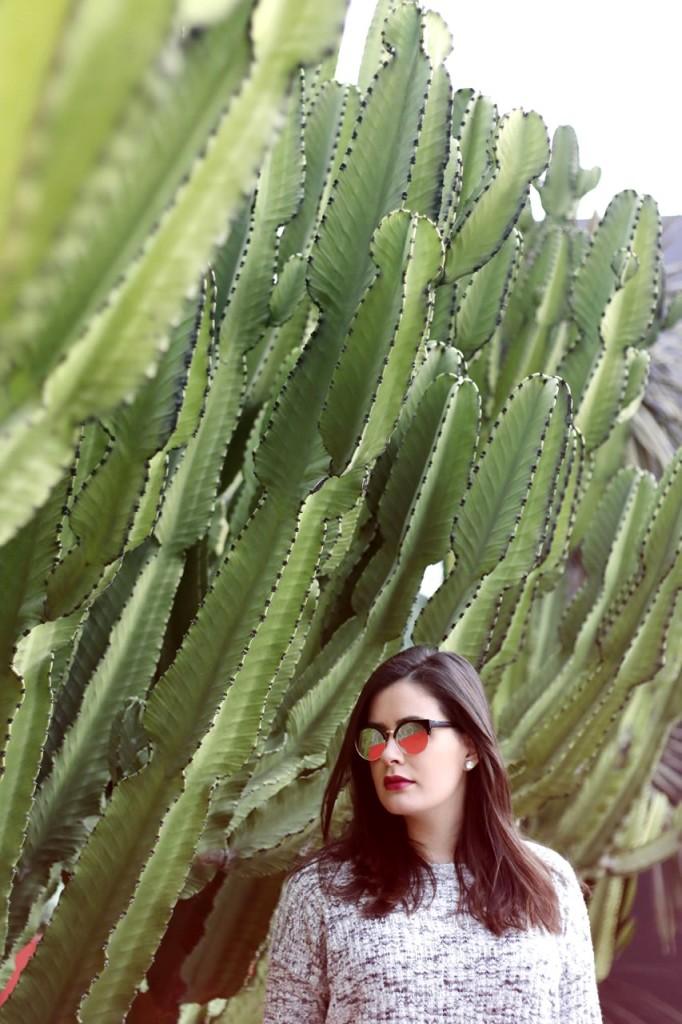 cactus-fashion
